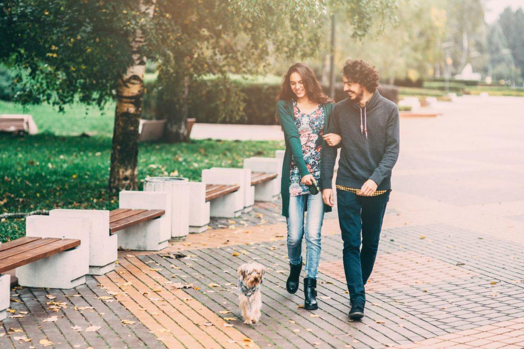 divorcios y mascotas